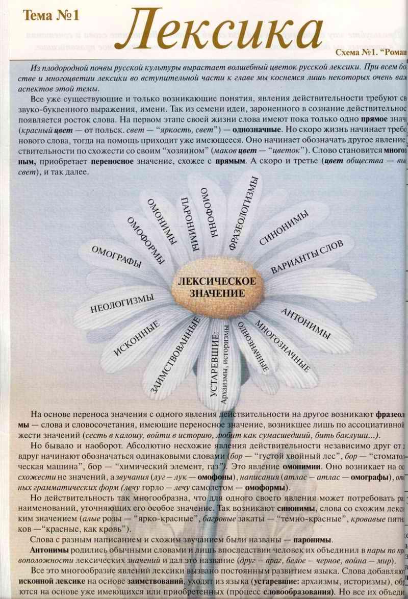 Лексика - Виктория Юрьевна Кузьмина.